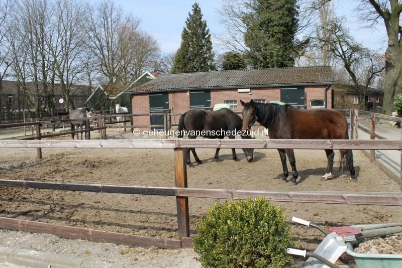 2013-04-08 bron A Westerhuis (10018).JPG