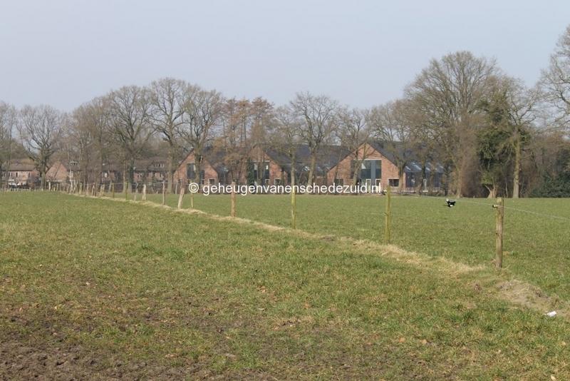 2015-03-16  bron A Westerhuis (2).JPG