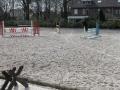 2013-04-08 bron A Westerhuis (10017).JPG