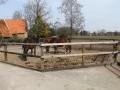 2013-04-08 bron A Westerhuis (10019).JPG