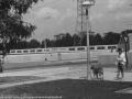 1988-1990 Aanleg  rijksweg 35 viaduct van veenlaan aansluiting hofteweg op van veenlaan bron Hans Tietjens (98).jpg