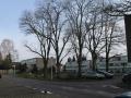2015-02-25 Piksenbrink speelplein voor de bomenkap (2).JPG