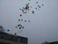 2013-03-20 Feest tbv Start Sloop Bijvank Noord    (154).jpg