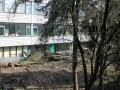 2013-03-25 Achterkant Pollenbrink 101-118 (1).JPG