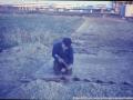 1967 Pollenbrink 75-82 zicht op Sibculobrink  (2) (small).jpg
