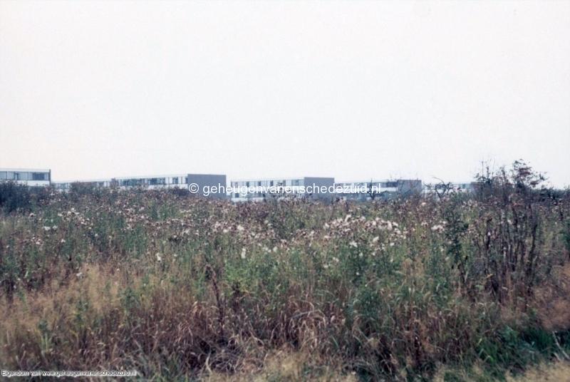 1970_Rhaanbrink_zicht_op_Piksenbrink_bron_mw.Assink-Heys.jpg