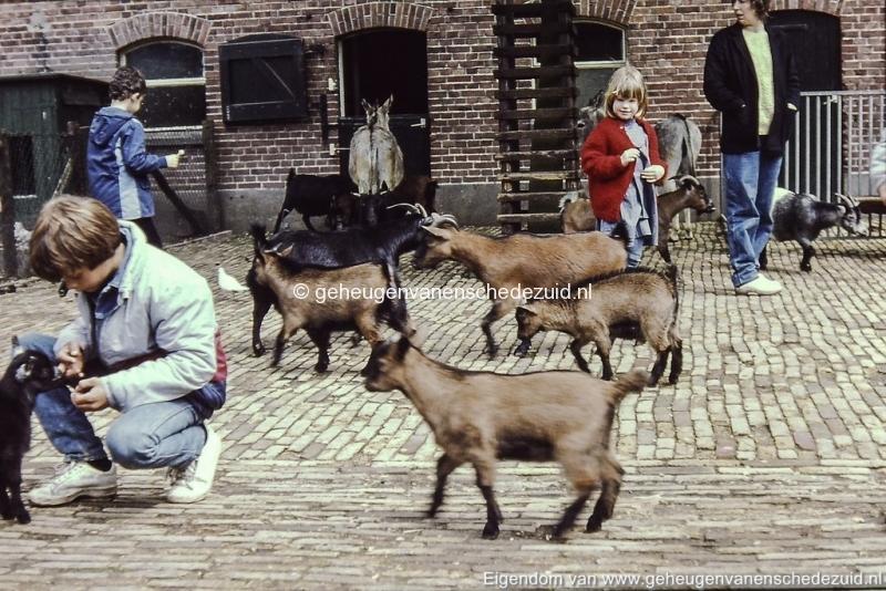 1980-1985 kinderboerderij Wesselerbrink bron H.J. Wolf (2) (small).jpg