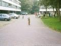 1998 spelletjesmiddag berghuizenbrink bron Ria Perik (1) (small).jpg