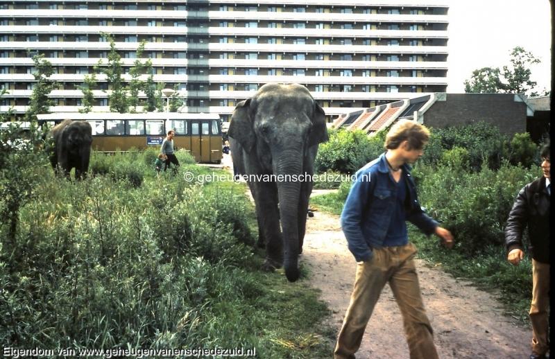 1981 Circus Holiday bij Winkelcentrum Zuid bron Remko Rensink (4).jpg